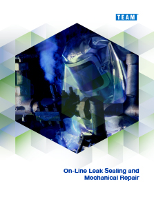 TEAM On-line leak repair